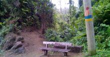 Waitukubuli National Trail Segment Updates-Rehabilitation